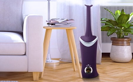Keep Allergens At Bay With A Home Humidifier