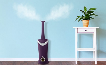 Can I Run My Humidifier All Year-Round?