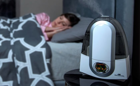 Is a Home Humidifier Good For Pets?