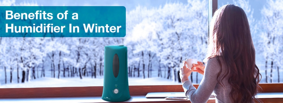 The Winter Benefits of a Humidifier