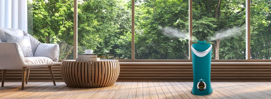 Benefits of Using a Cool Mist Humidifier